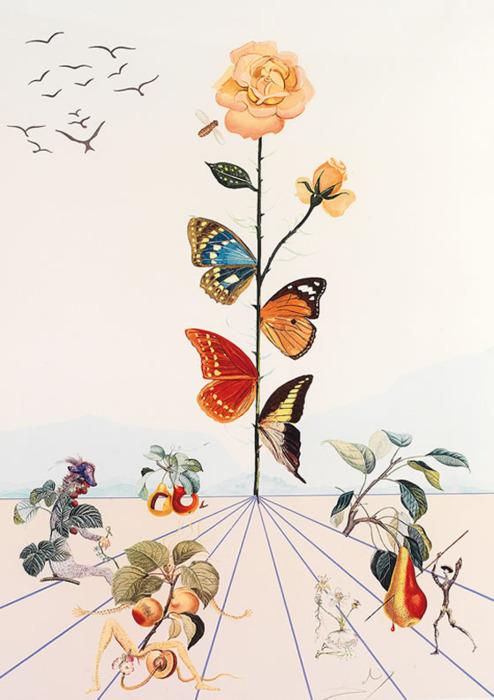 Цветок Дали, Сальвадор Дали, 1969